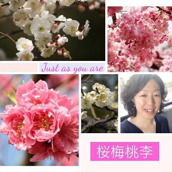 月めぐり漢方 小さな幸せ 桜桃梅李