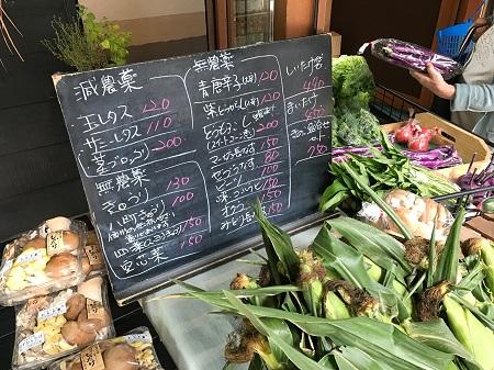 無農薬_野菜_販売書_長野_薬膳ツアー_20180801